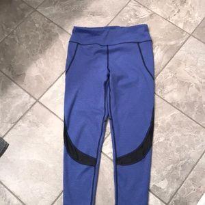 Lou and grey purple with black mesh leggings